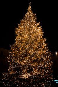 juletræsfest